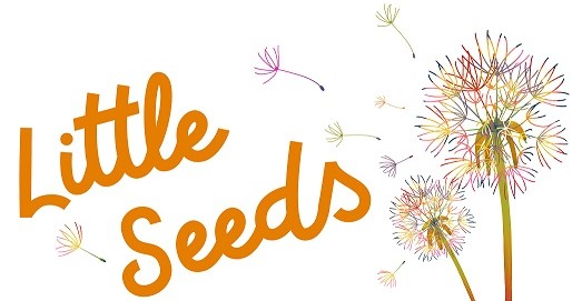 little seeds logo low res 2